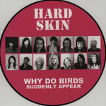 "HARD SKIN - WHY DO BIRDS SUDDENTLY APPEAR (PICTURE 12"") 14€"